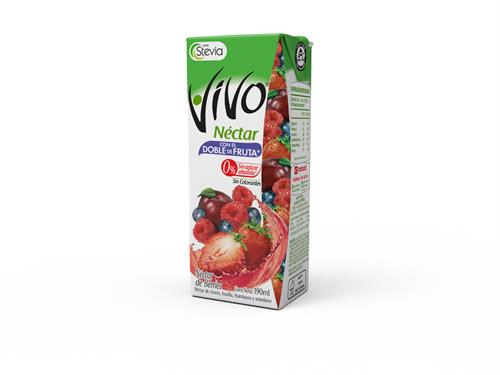 Foto JUGO NECTAR BERRIES 190ML VIVO TETRA de